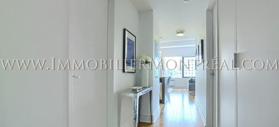 2-Chambres-2-Bedrooms-Centre-Ville-Downtown-1010-Sainte-Catherine-Est-For-Rent-A-Louer-14A