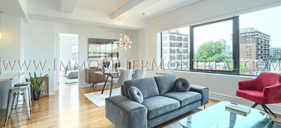 2-Chambres-2-Bedrooms-Centre-Ville-Downtown-1010-Sainte-Catherine-Est-For-Rent-A-Louer-2A