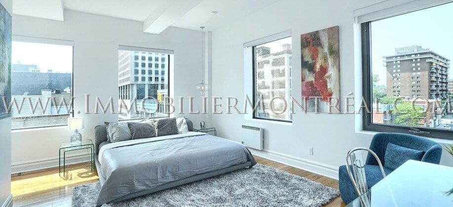 2-Chambres-2-Bedrooms-Centre-Ville-Downtown-1010-Sainte-Catherine-Est-For-Rent-A-Louer-3A