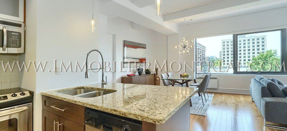 2-Chambres-2-Bedrooms-Centre-Ville-Downtown-1010-Sainte-Catherine-Est-For-Rent-A-Louer-6A