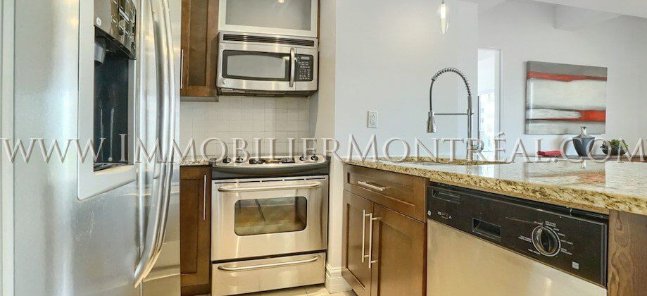 2-Chambres-2-Bedrooms-Centre-Ville-Downtown-1010-Sainte-Catherine-Est-For-Rent-A-Louer-7A