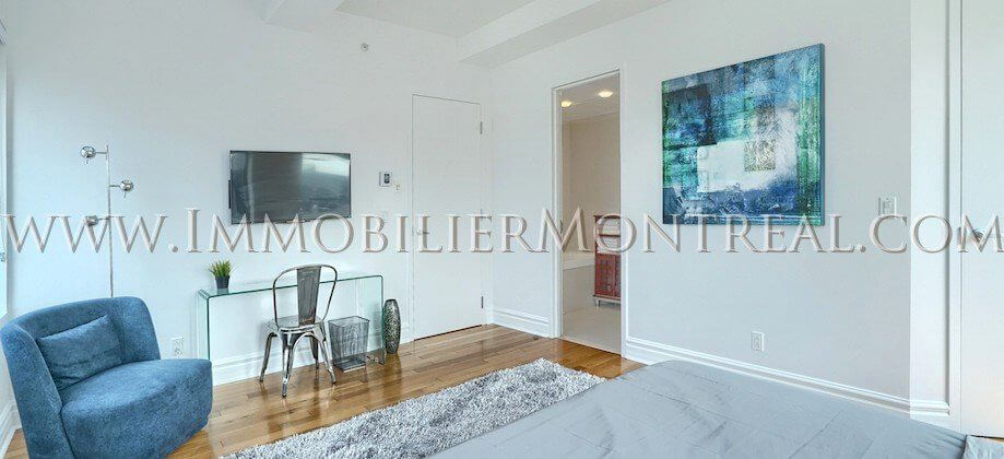 2-Chambres-2-Bedrooms-Centre-Ville-Downtown-1010-Sainte-Catherine-Est-For-Rent-A-Louer-9A