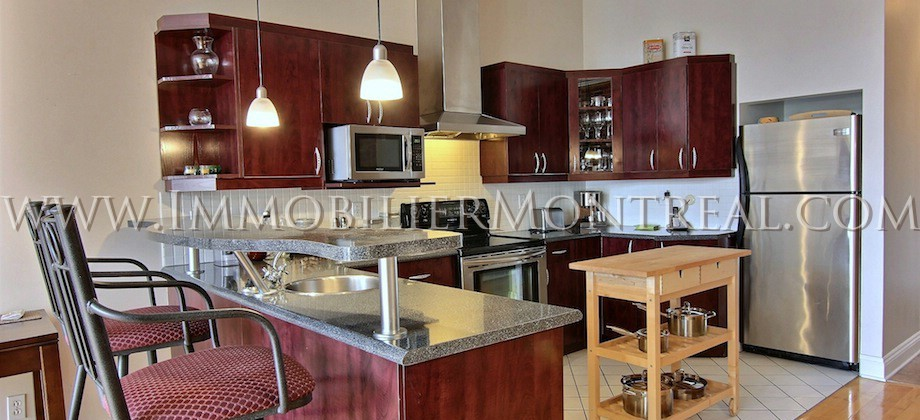 Condo-Loft-Old-Montreal-Old-Port-395-Notre-Dame-Ouest-For-Rent-A-Louer-3