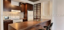 Condo-Montreal-Downtown-Centre-Ville-1100-Jeanne-Mance-For-Rent-A-Louer-1