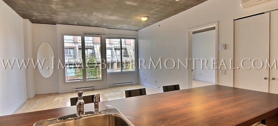 Condo-Montreal-Downtown-Centre-Ville-1100-Jeanne-Mance-For-Rent-A-Louer-2