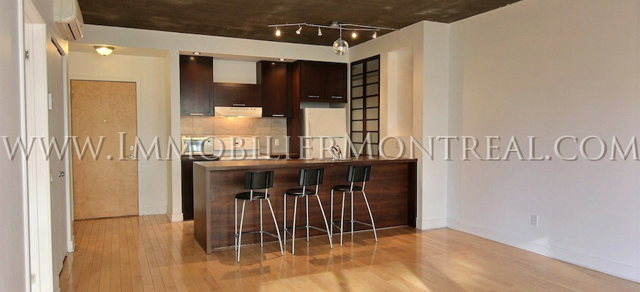 Condo-Montreal-Downtown-Centre-Ville-1100-Jeanne-Mance-For-Rent-A-Louer-3