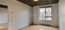 Condo-Montreal-Downtown-Centre-Ville-1100-Jeanne-Mance-For-Rent-A-Louer-5