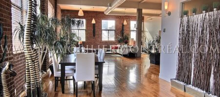 Location appartements meubl s montreal furnished for Loft a vendre new york